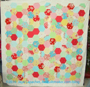 Attack of the Hexies Finished Top