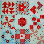 Aqua/Red Sampler Blocks