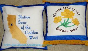 Yellow & Blue NSGW Pillows