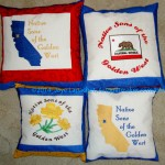 2014 NSGW Pillows Complete