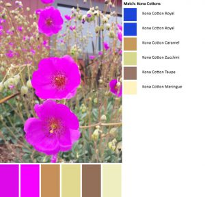 Color palette- July 1