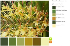Yellow Spiky Flower Inspiration