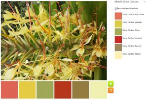Yellow Spiky Flower Inspiration 2