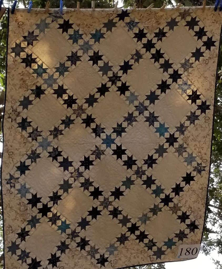 Edyta Sitar Sawtooth Star Quilt
