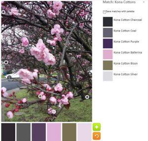 ColorPlay: CherryTree default palette
