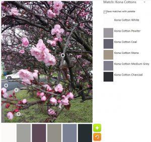 ColorPlay: CherryTree n.3