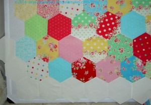 Attack of the Hexies border - in process
