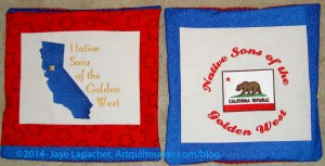 Red & Blue NSGW Pillows
