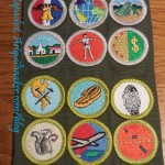 Merit Badge Sash - January 2015