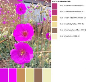Color palette #2-July 1