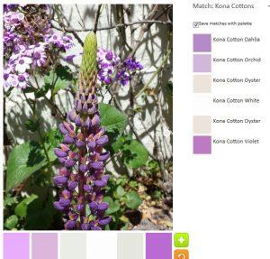 ColorPlay May 26 n.6