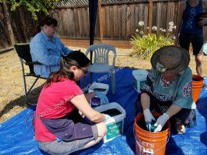 indigo dyeing at CQFA