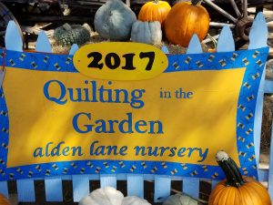 Quilting in the Garden 2017