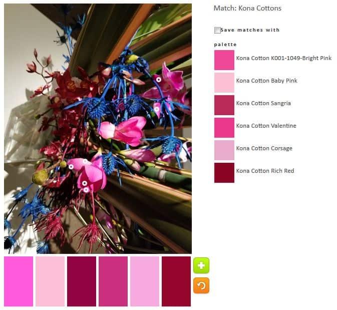 ColorPlay: DeYoung Flowers n.2