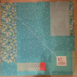 Aqua-Red Sampler back, quilted & ready for binding
